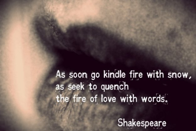 As soon go kindle fire with snow, as seek to quench the fire of love with words. Shakespeare.